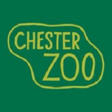 Chester Zoo Jobs
